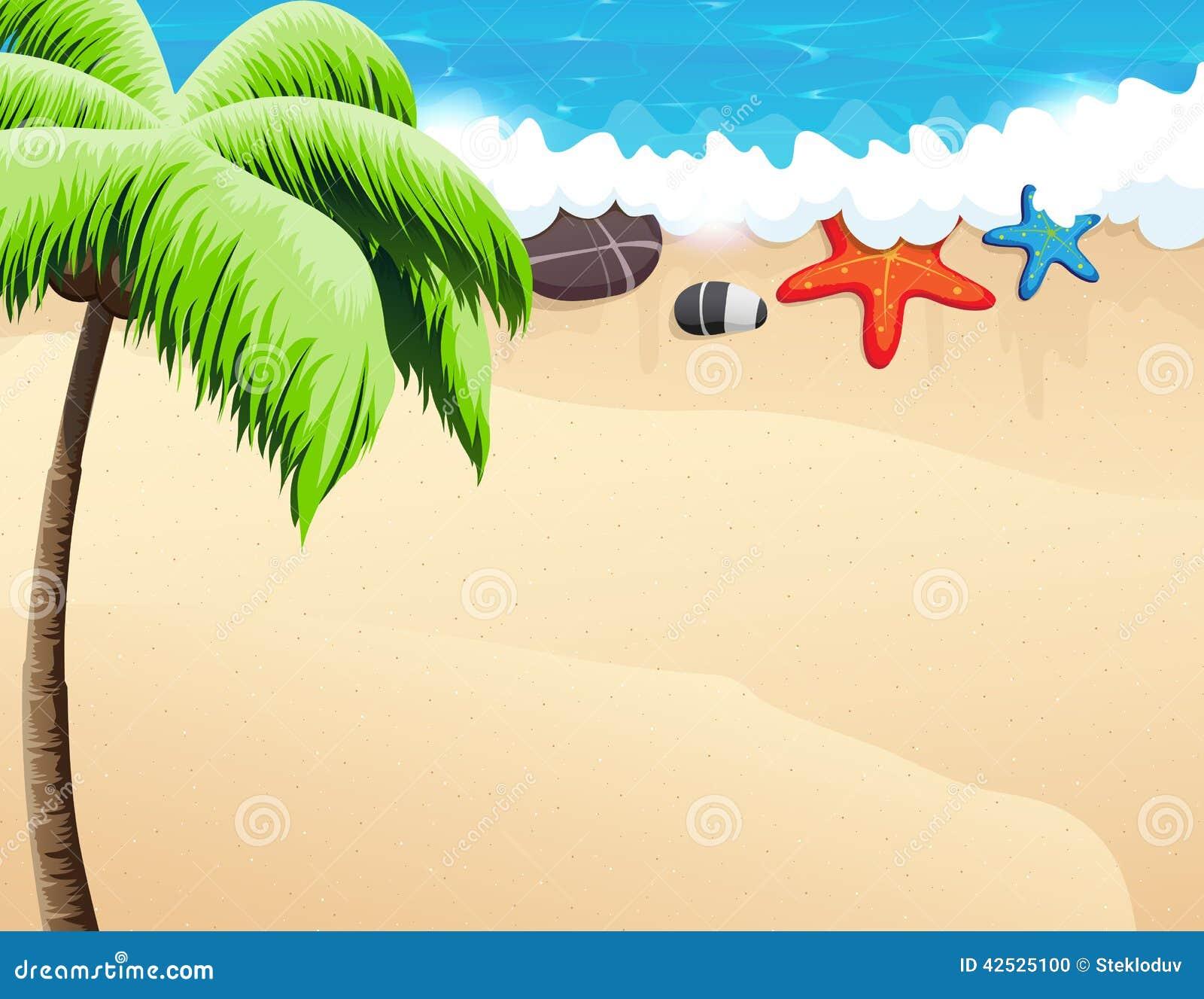 Palmy plażowi tropikalne