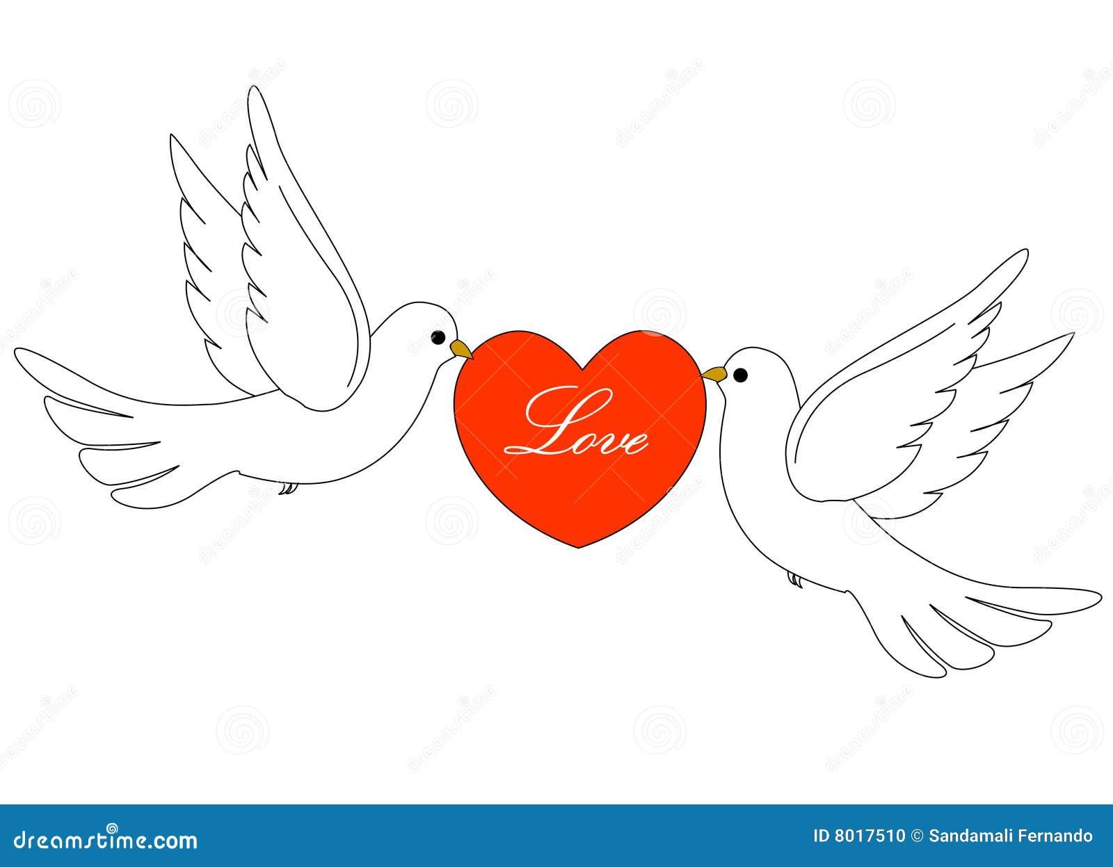 Palomas blancas para bodas - Imagui