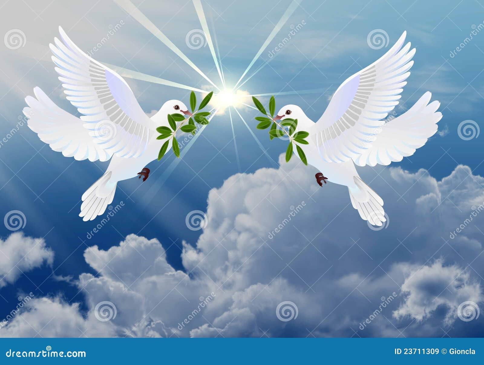 Imagen de la paloma de la paz para colorear ~ Imagenes de