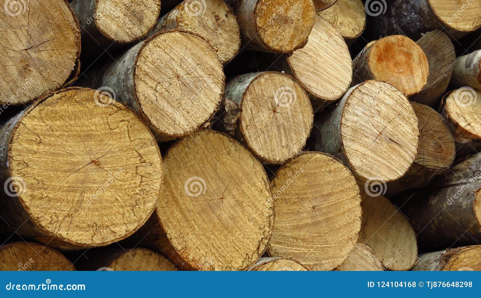 Palowy drewna cięcie Składa łupkę