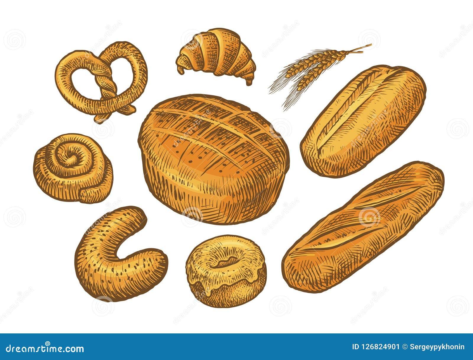 Pan, bosquejo de la repostería y pastelería Panadería, bakeshop, concepto de la comida Vector del vintage