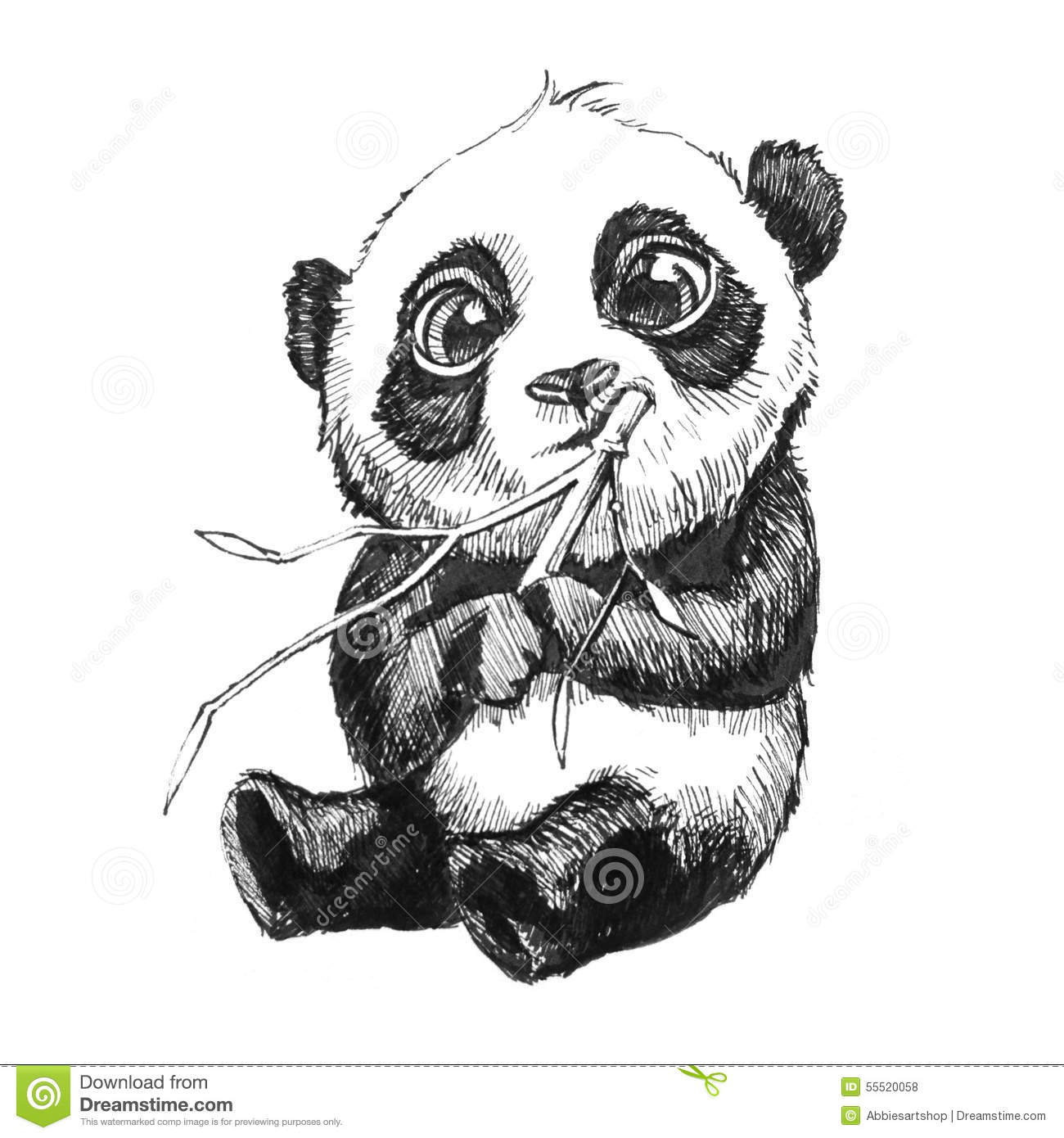 Adorable Baby Panda Bear Illustration Hand Drawn Sketch Of