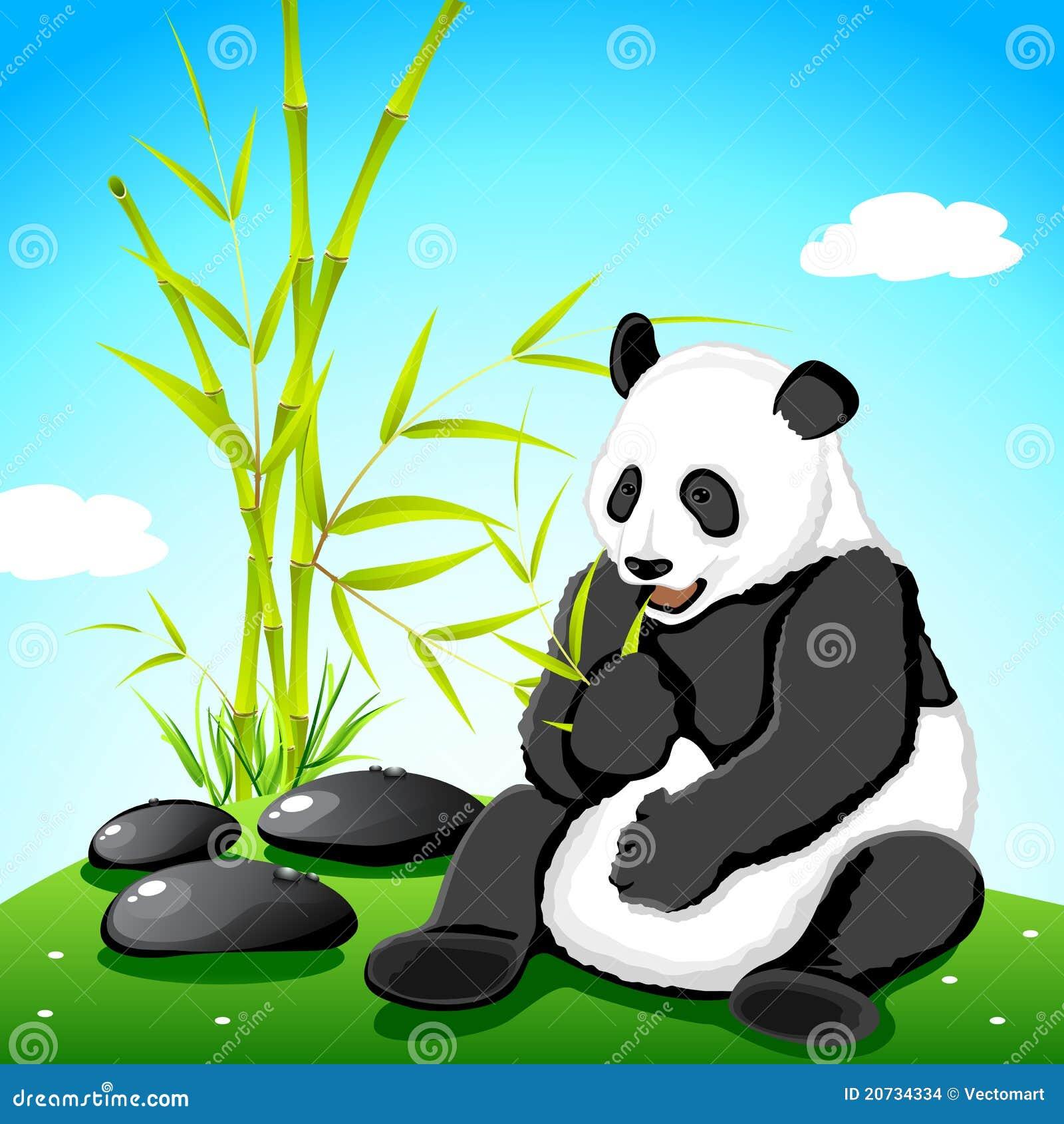 Panda Eating Bamboo Stock Vector Illustration Of Mammal 20734334