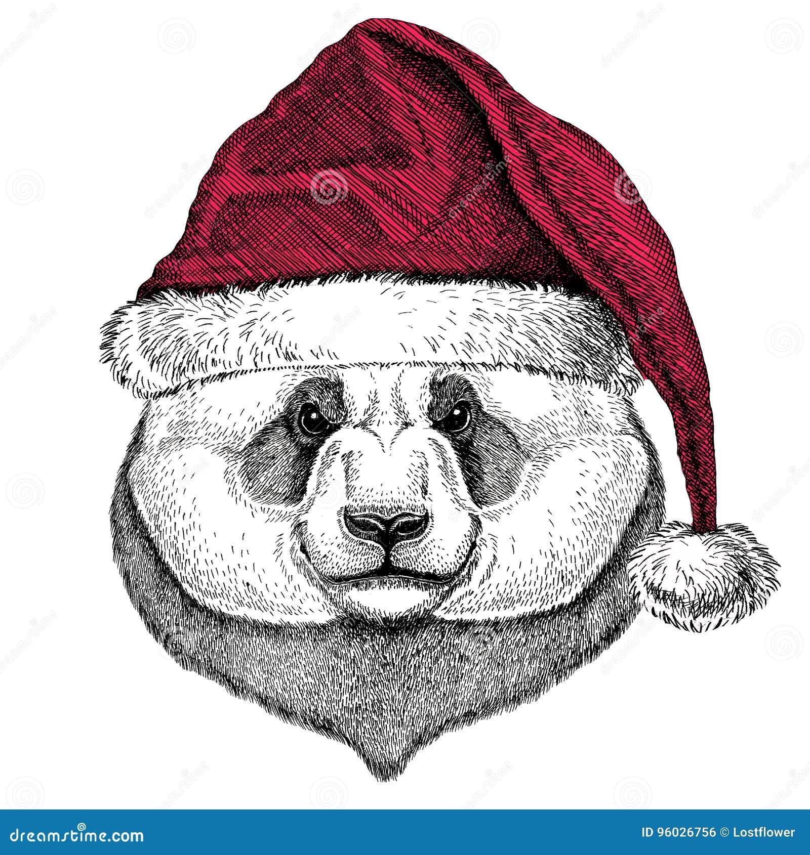 Panda niedźwiedź, bambusa niedźwiadkowy Bożenarodzeniowy ilustracyjny dzikie zwierzę jest ubranym bożego narodzenia Santa Claus z