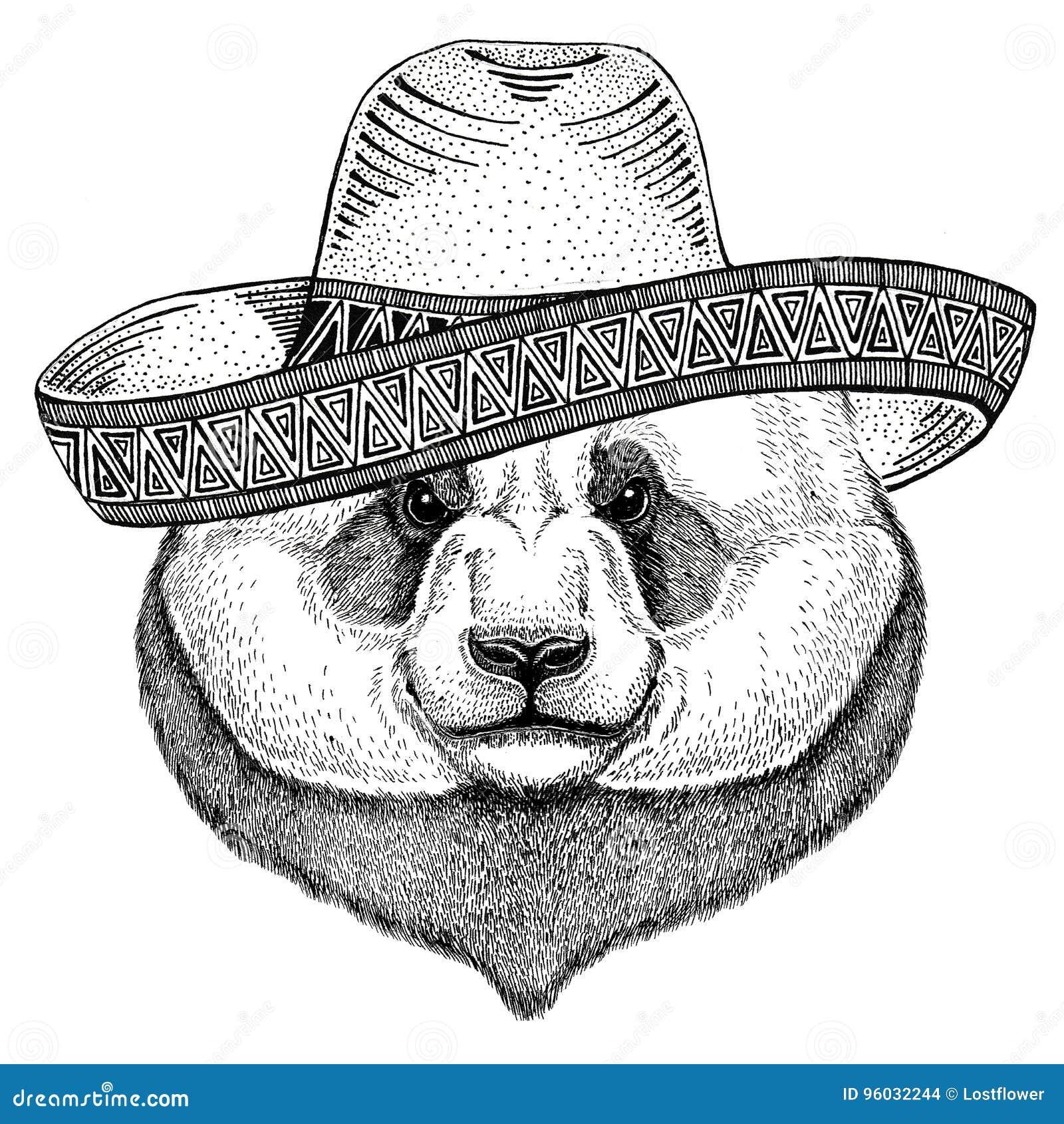Panda niedźwiedź, bambusa niedźwiadkowy dzikie zwierzę jest ubranym sombrero Meksyk fiesta meksykanina przyjęcia ilustracyjnego D