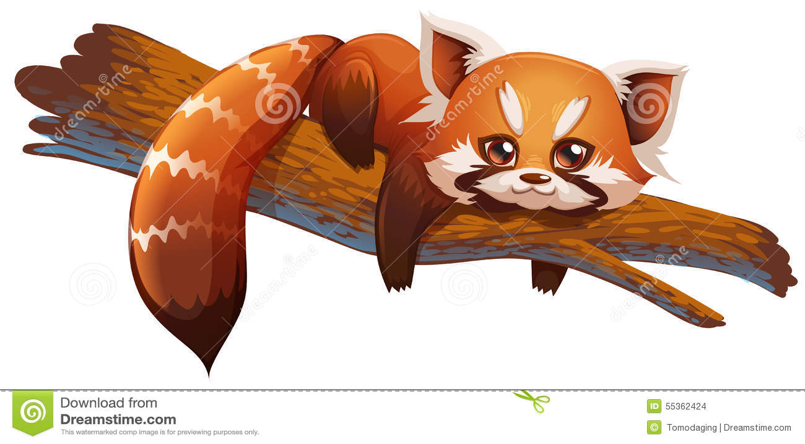 Panda rosso sveglio