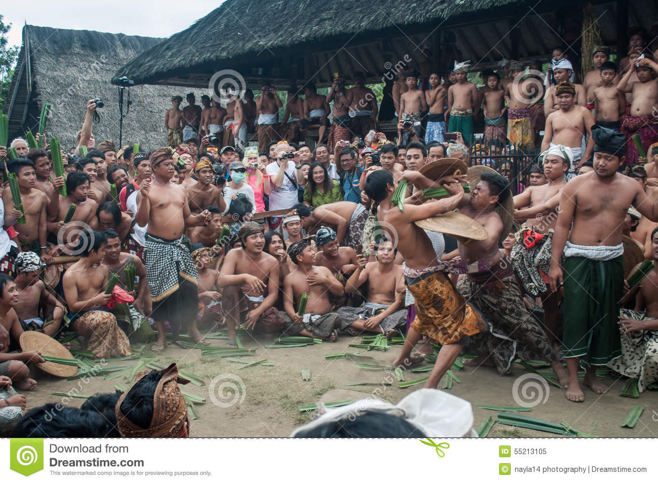 Pandan Fighting In Tenganan Village Bali Editorial Image  Image of money, indonesia: 55213105