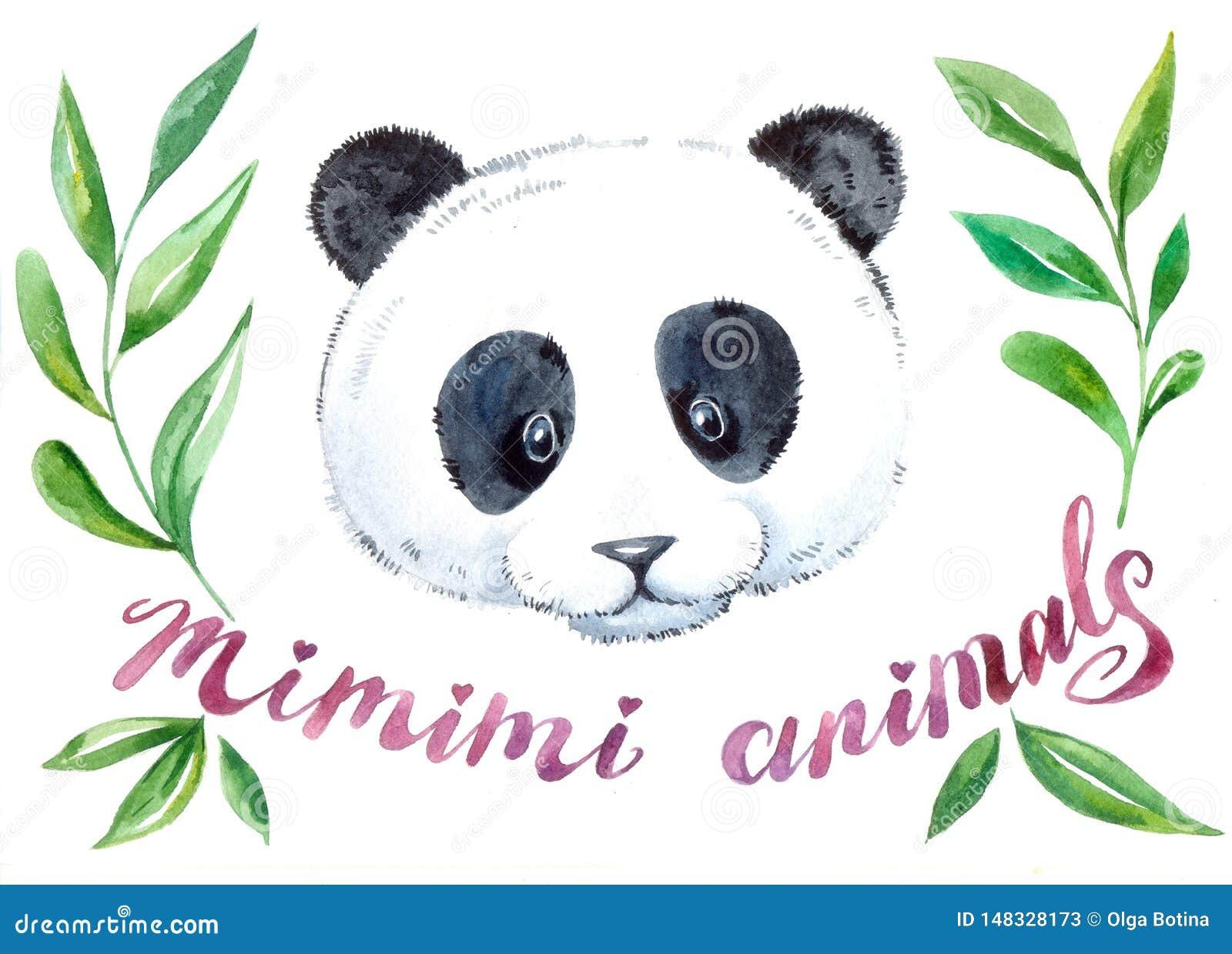 Pandy akwareli śliczna ilustracja