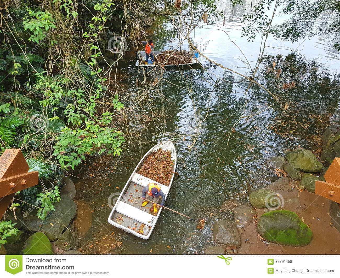Upkeep And Maintenance Of A Pond Editorial Stock Photo