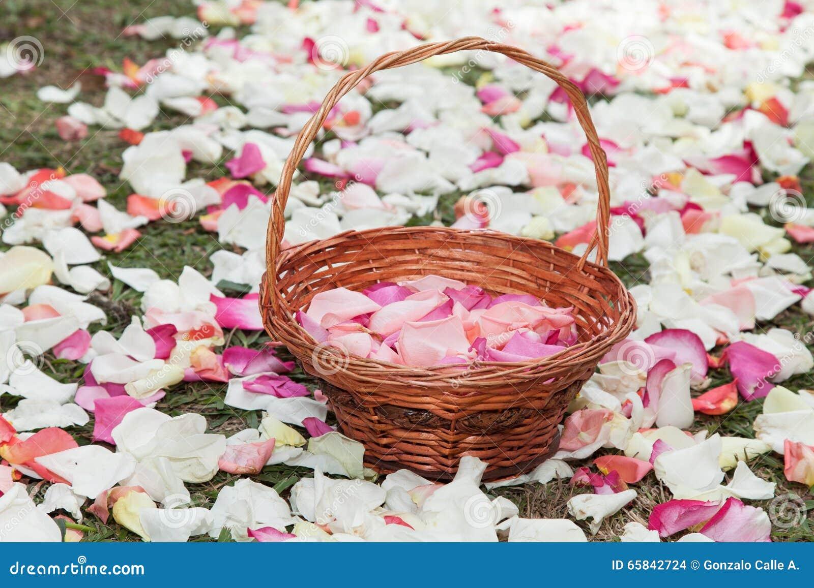 Panier avec des pétales de rose dans un chemin des pétales de rose