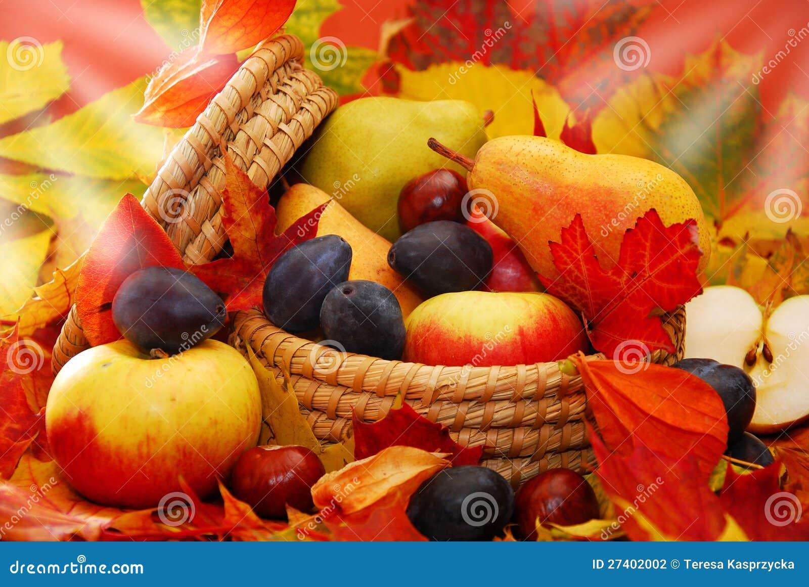 panier des fruits d 39 automne photo stock image du jardin nourriture 27402002. Black Bedroom Furniture Sets. Home Design Ideas