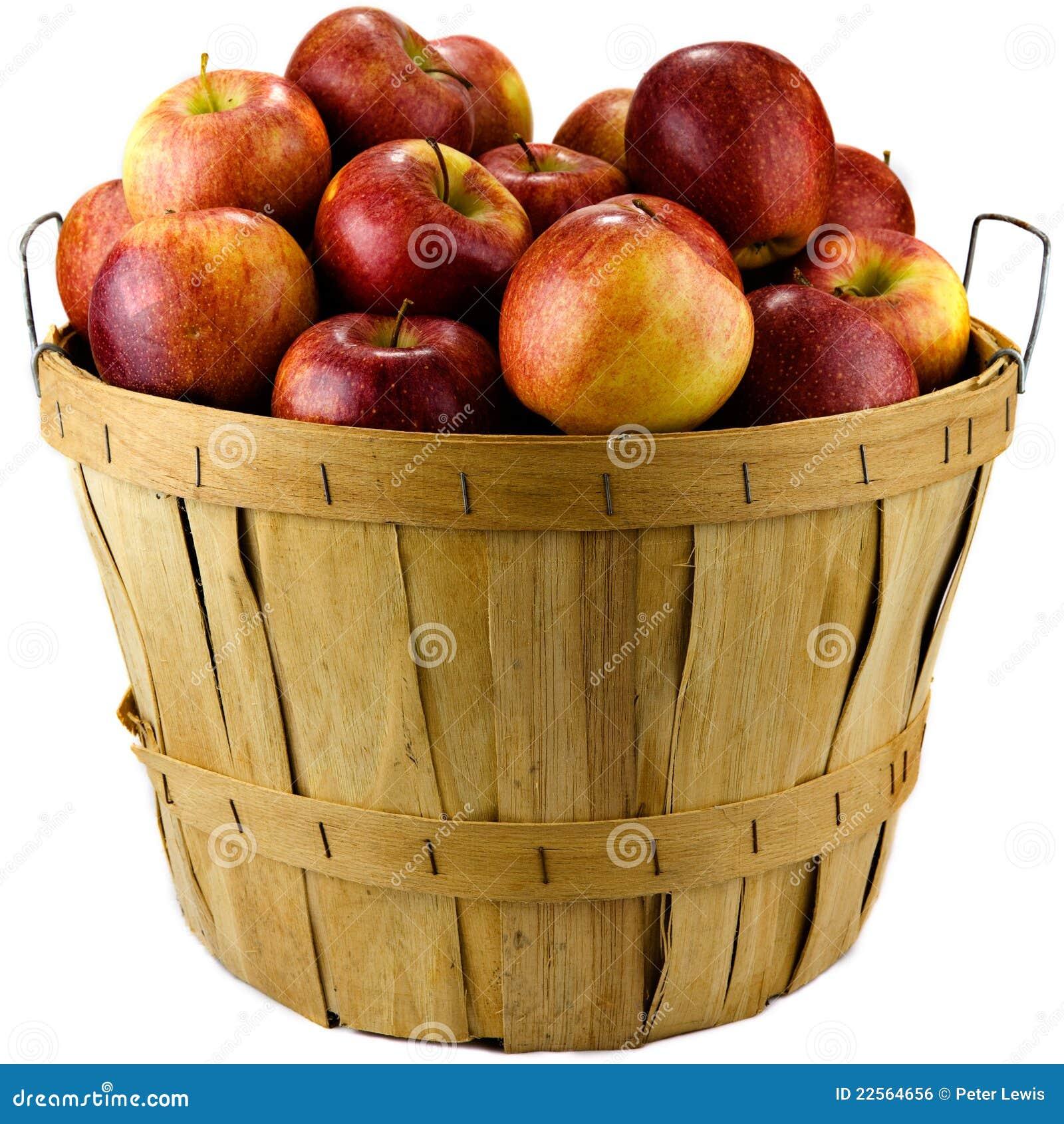 Panier des pommes