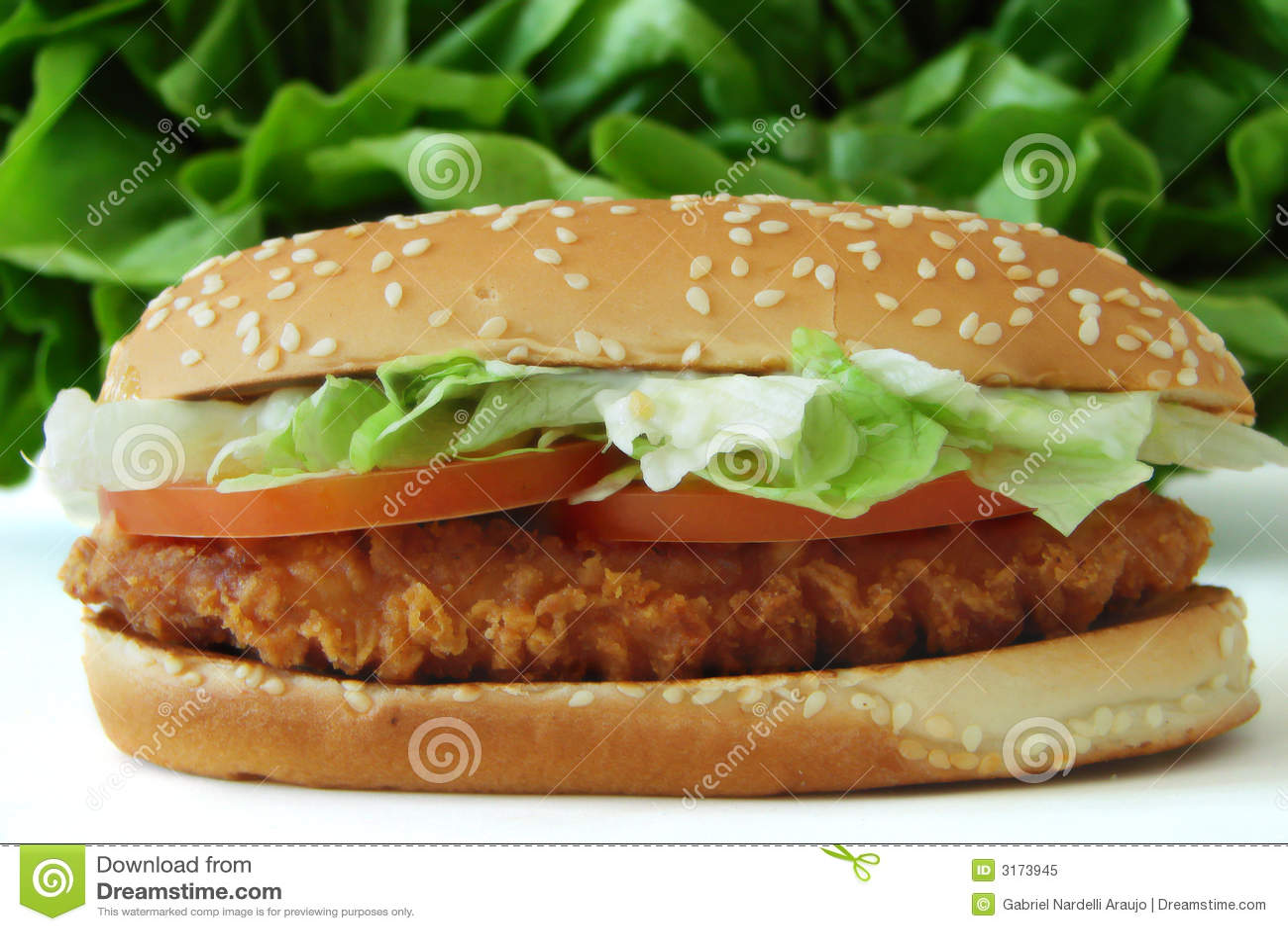 Panino di pollo