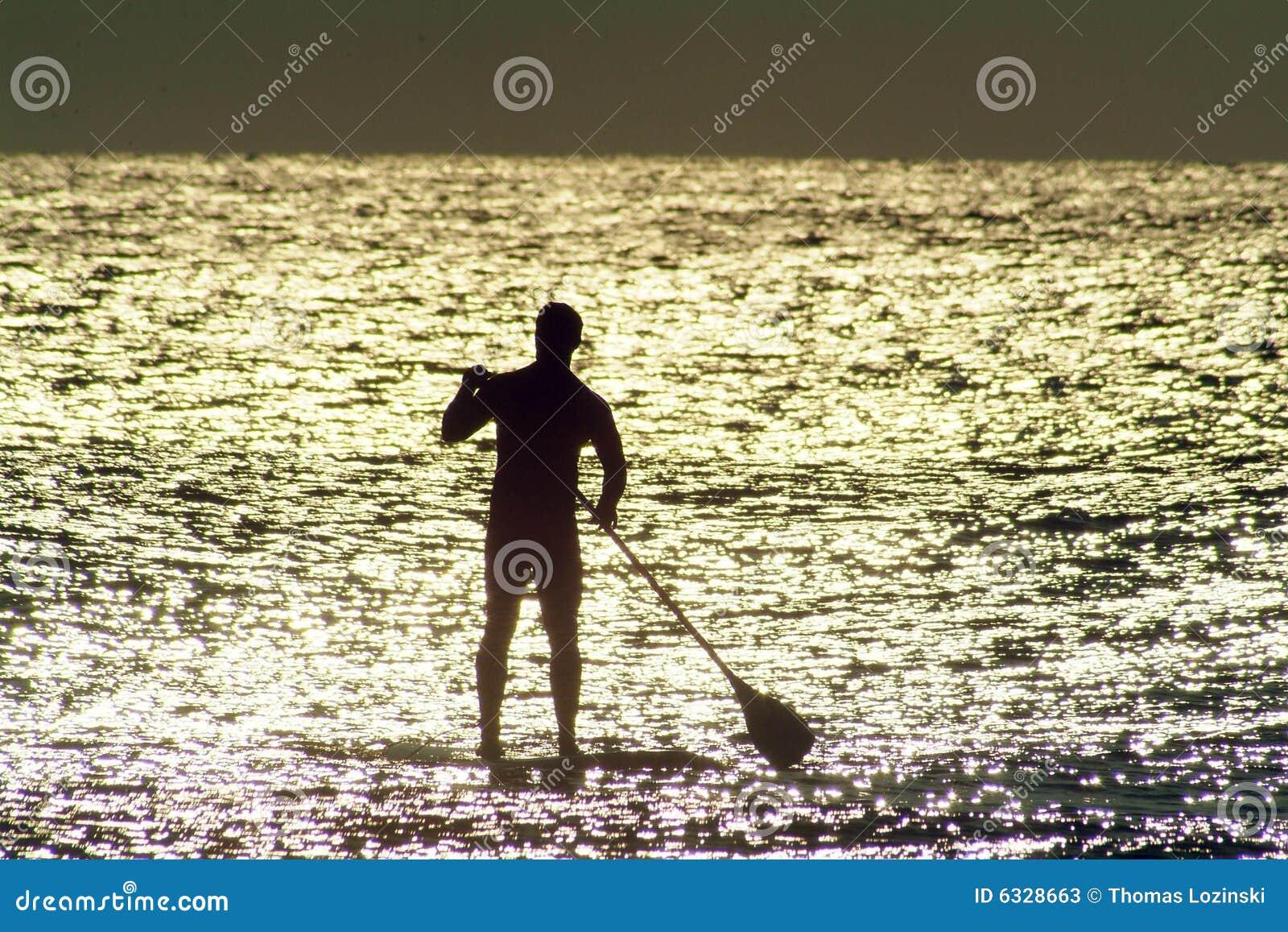 Panneau de palette dans l eau Sunlit