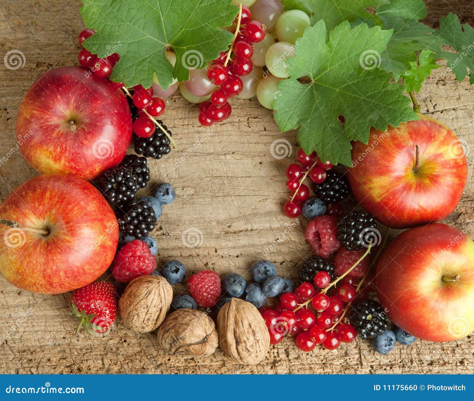 Panneau de Thankgiving avec des baies d automne