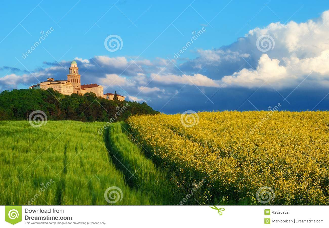 Pannonhalma Abbey with wheat and rapeseed field, Hungary