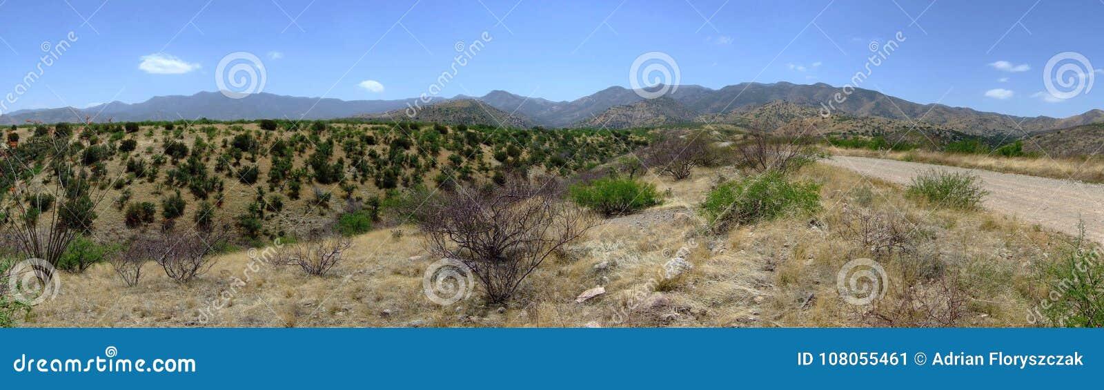 Panorama über desertland Tucson, Arizona