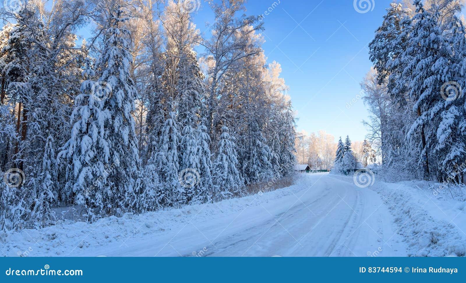 Panorama śnieżni drewna z drogą prowadzi dom, Rosja Urals