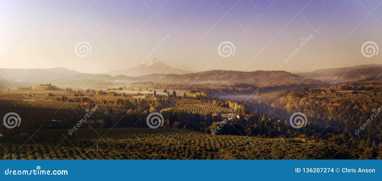 Panorama aérien large de lever de soleil d automne des vignobles et des vergers dans les vallées au-dessous du capot de Mt sembla