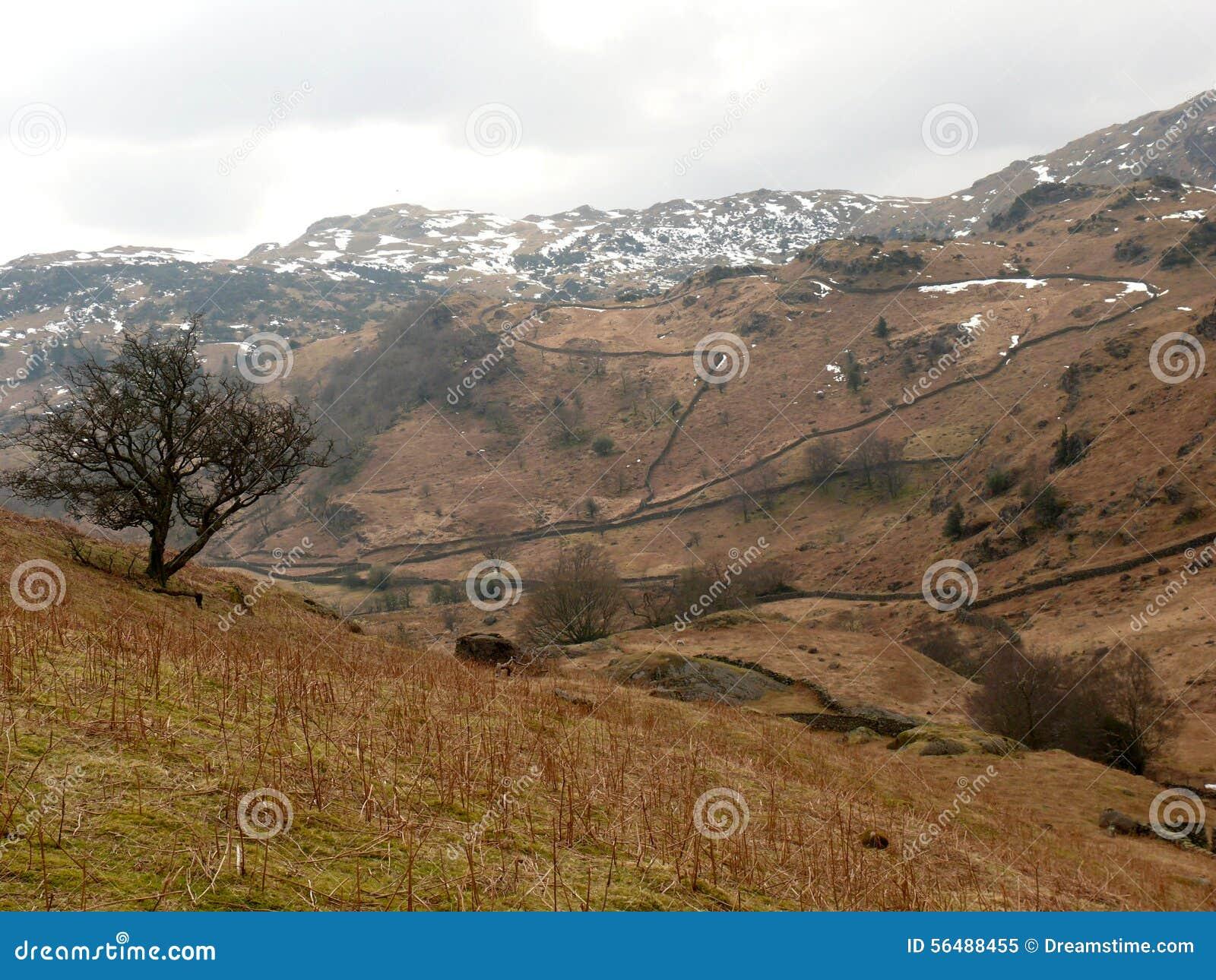 Panorama au secteur de lac, Cumbria, Angleterre R-U