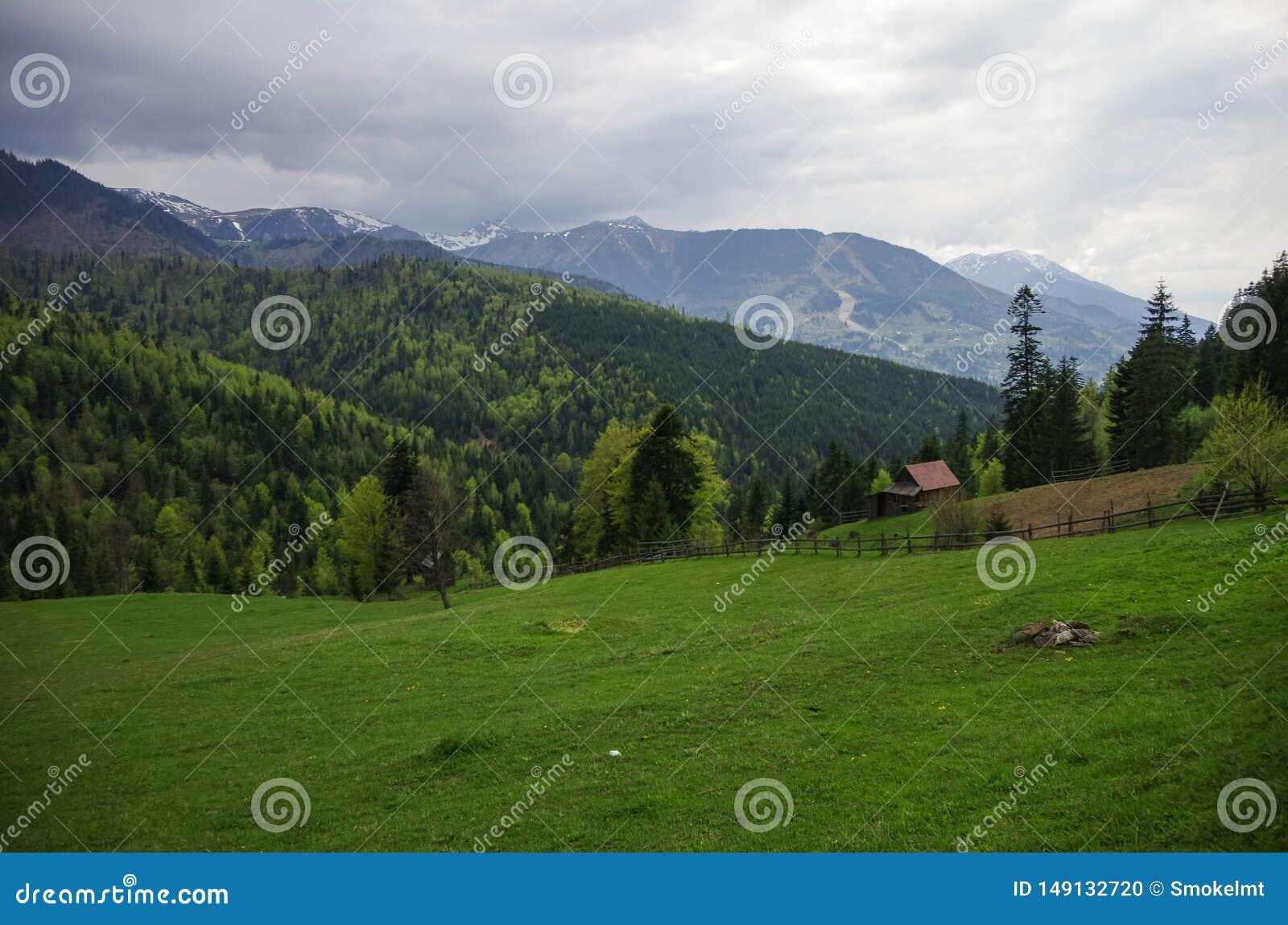 Panorama av Carpathians berg med stormig molnhimmel och sn? p? blasten, Transylvanian, Rum?nien