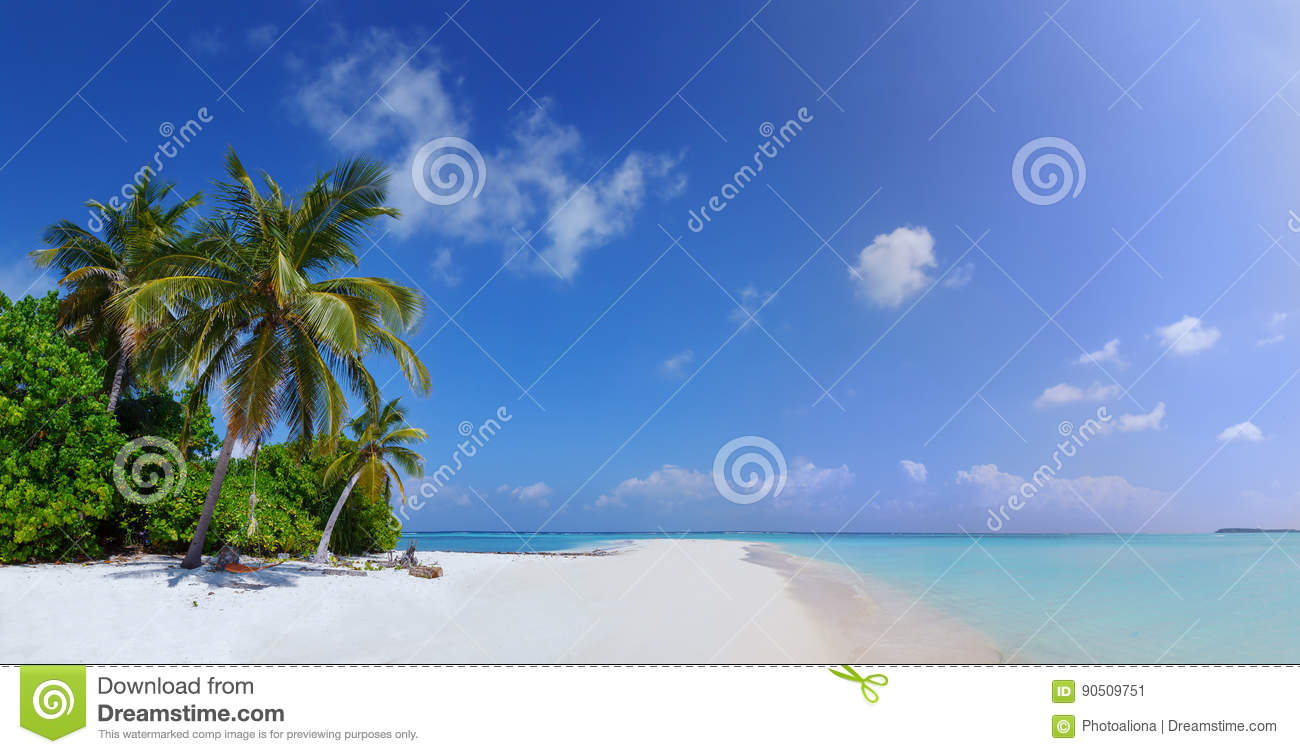 Panorama of Beach at Maldives island Fulhadhoo with white sandy idyllic perfect beach and sea and curve palm