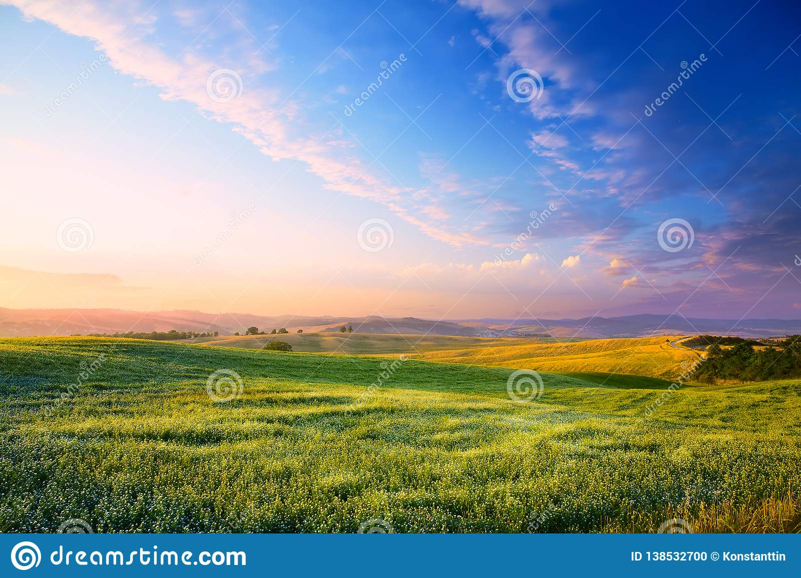 Art Panorama of a colourful sunset on a flowering green meadow