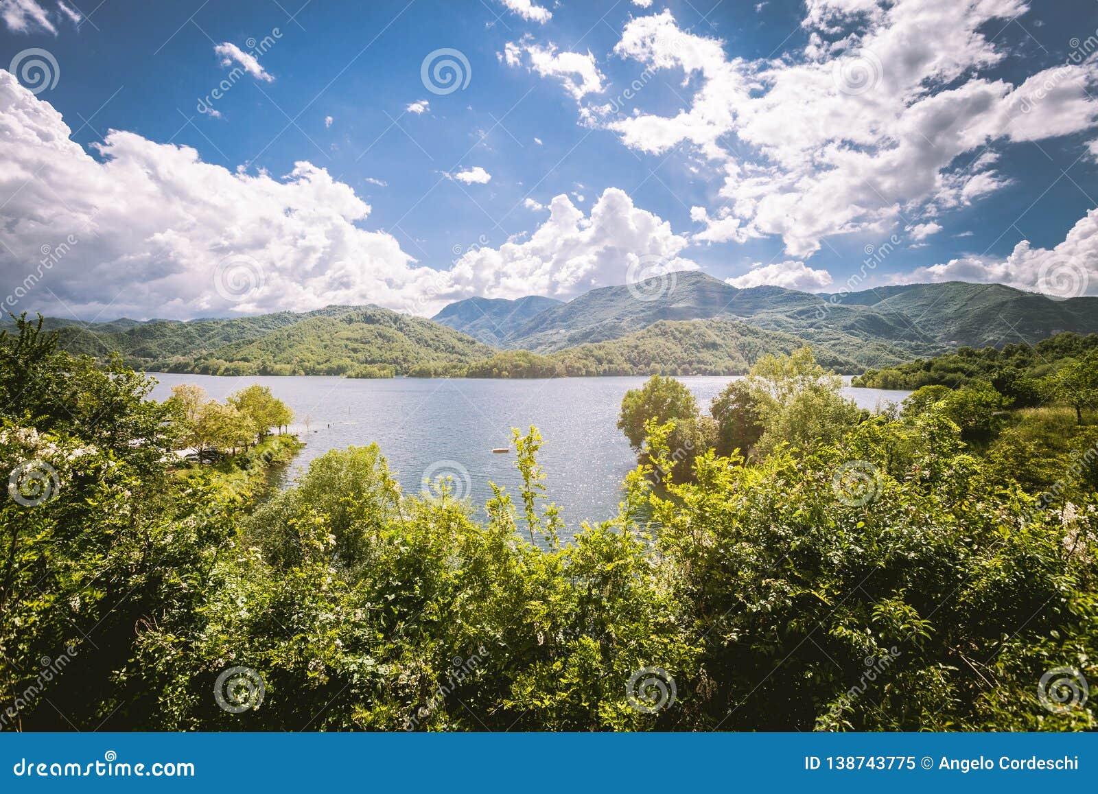 Panorama d un lac avec la végétation verte autour Bassin naturel avec la forêt et les montagnes