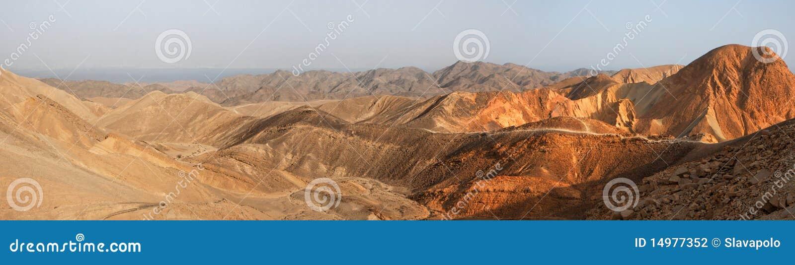 Panorama da paisagem do deserto no por do sol