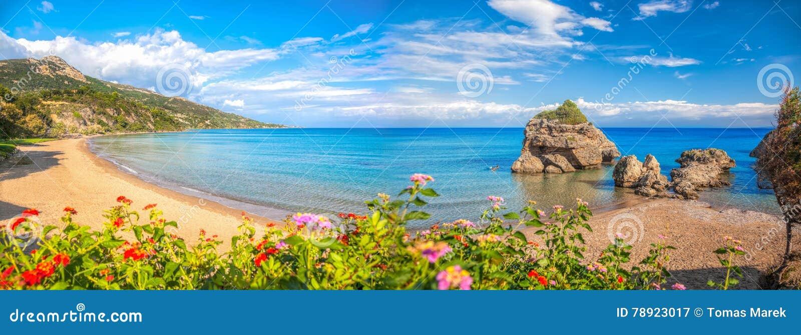 Panorama da praia de Porto Zorro contra flores coloridas na ilha de Zakynthos, Grécia
