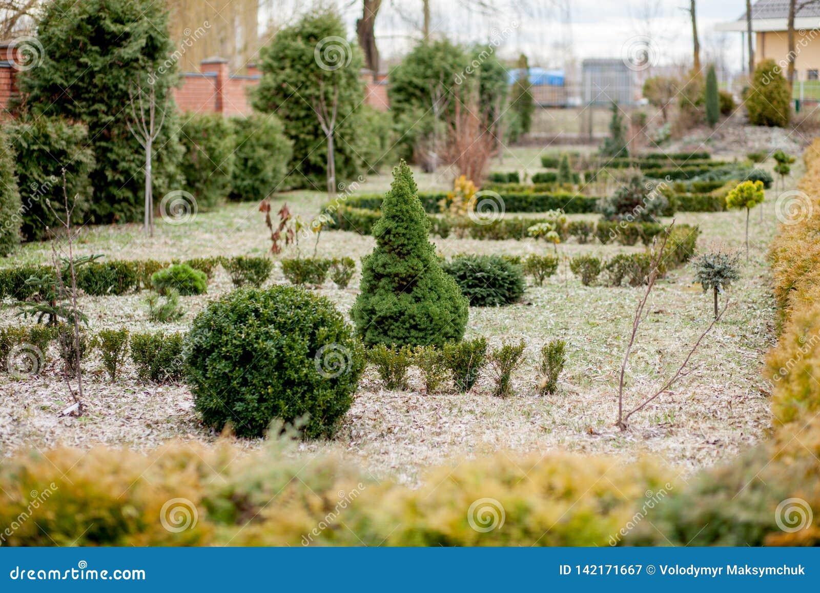 Panorama De Aménagement Naturel Dans Le Jardin Belle Vue De ...