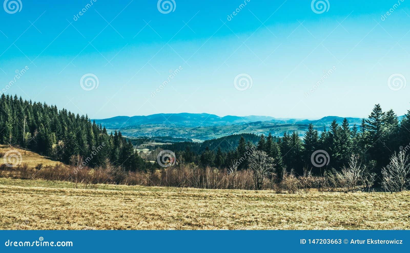 Panorama de baixas montanhas e florestas
