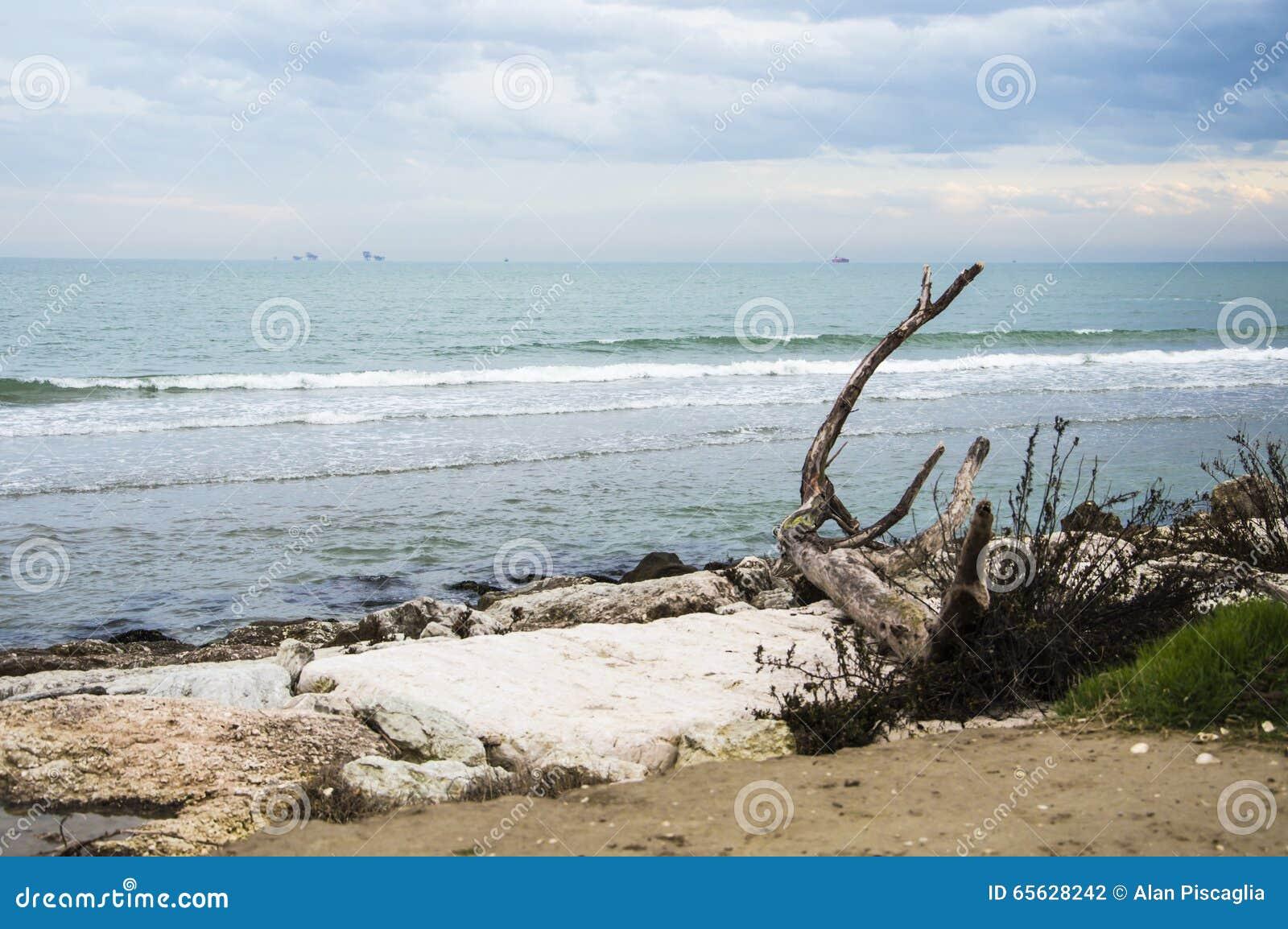 Panorama de côte