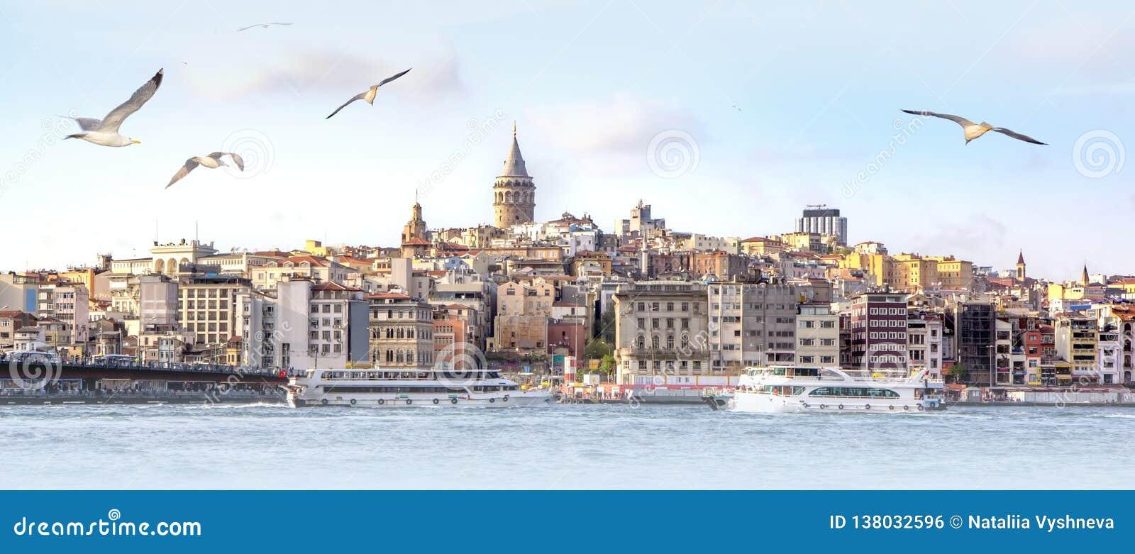 Panorama de Istambul com a torre de Galata na skyline e de gaivotas sobre o mar, paisagem larga do chifre dourado, fundo do curso