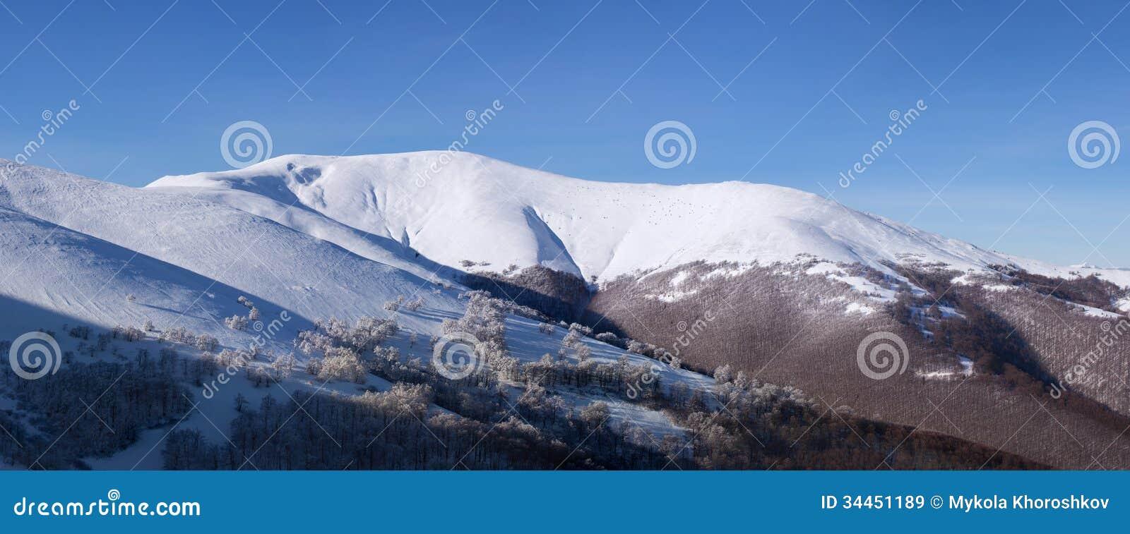 Panorama de paysage d hiver de montagnes carpathiennes