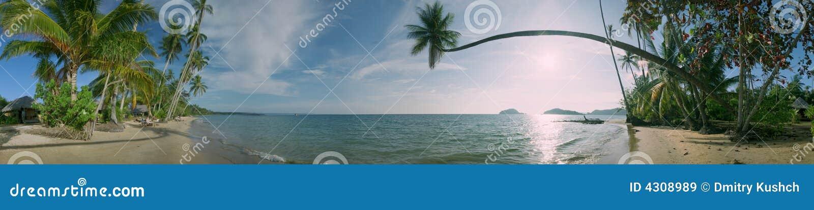 Panorama de plage des valeurs maximales de concentration au poste de travail de KOH