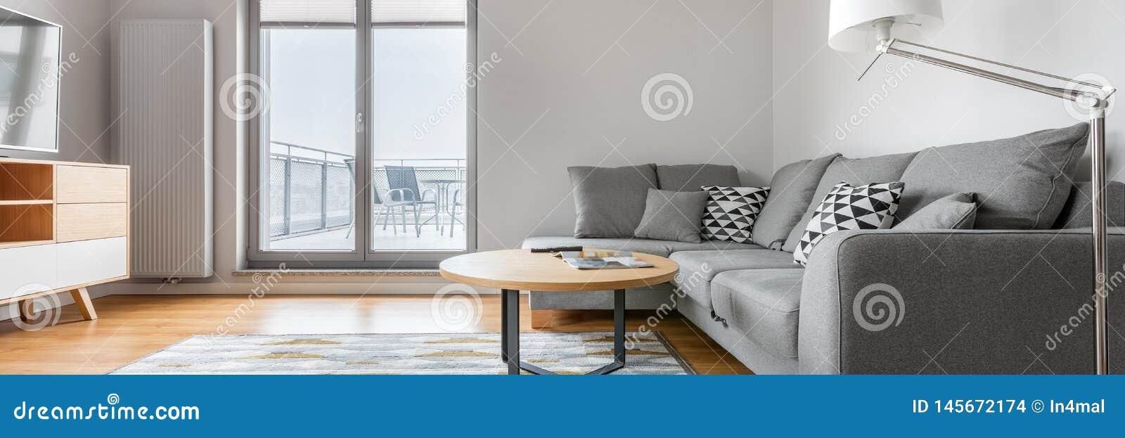 Panorama De Salon Gris Et Blanc Photo stock - Image du ...