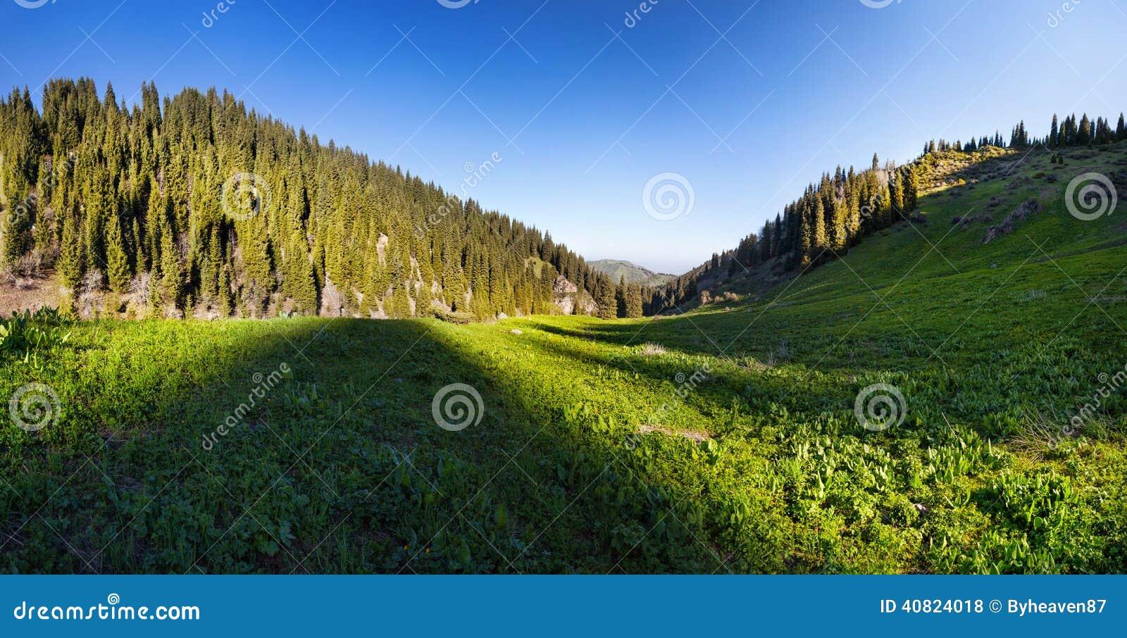 Panorama de vallée de montagne
