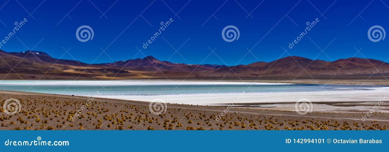Panorama del lago di sale in Atacama/Cile