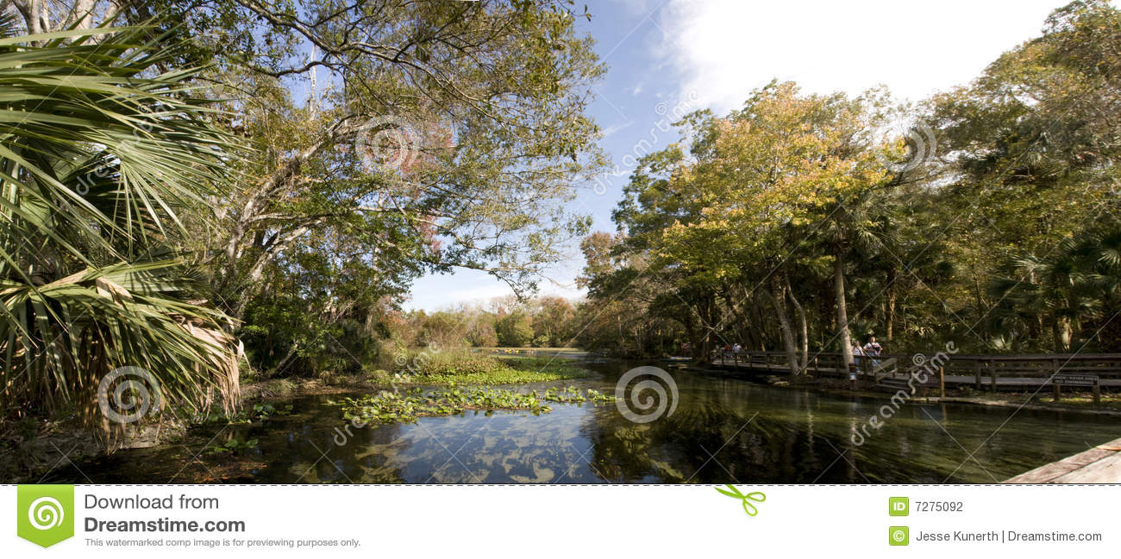 Panorama del resorte natural en la Florida