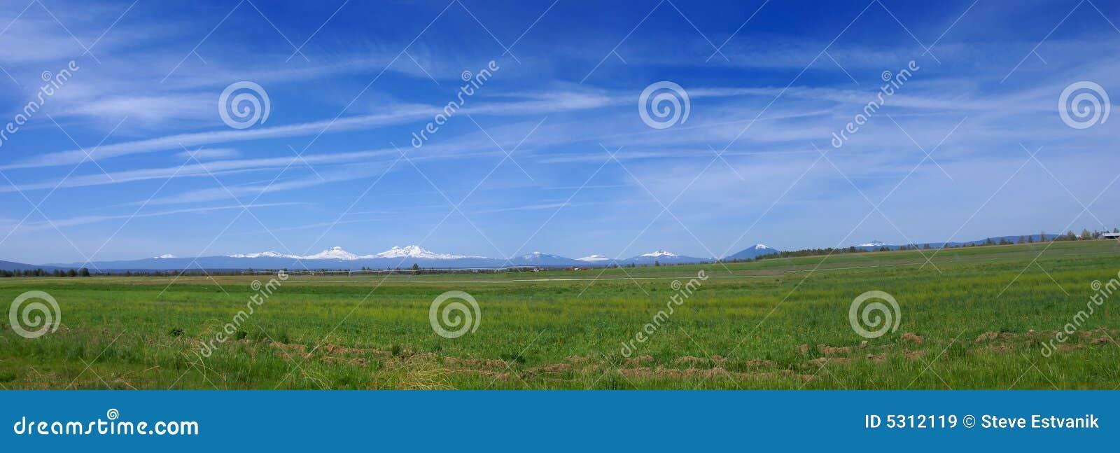 Download Panorama dell'Oregon immagine stock. Immagine di podere - 5312119