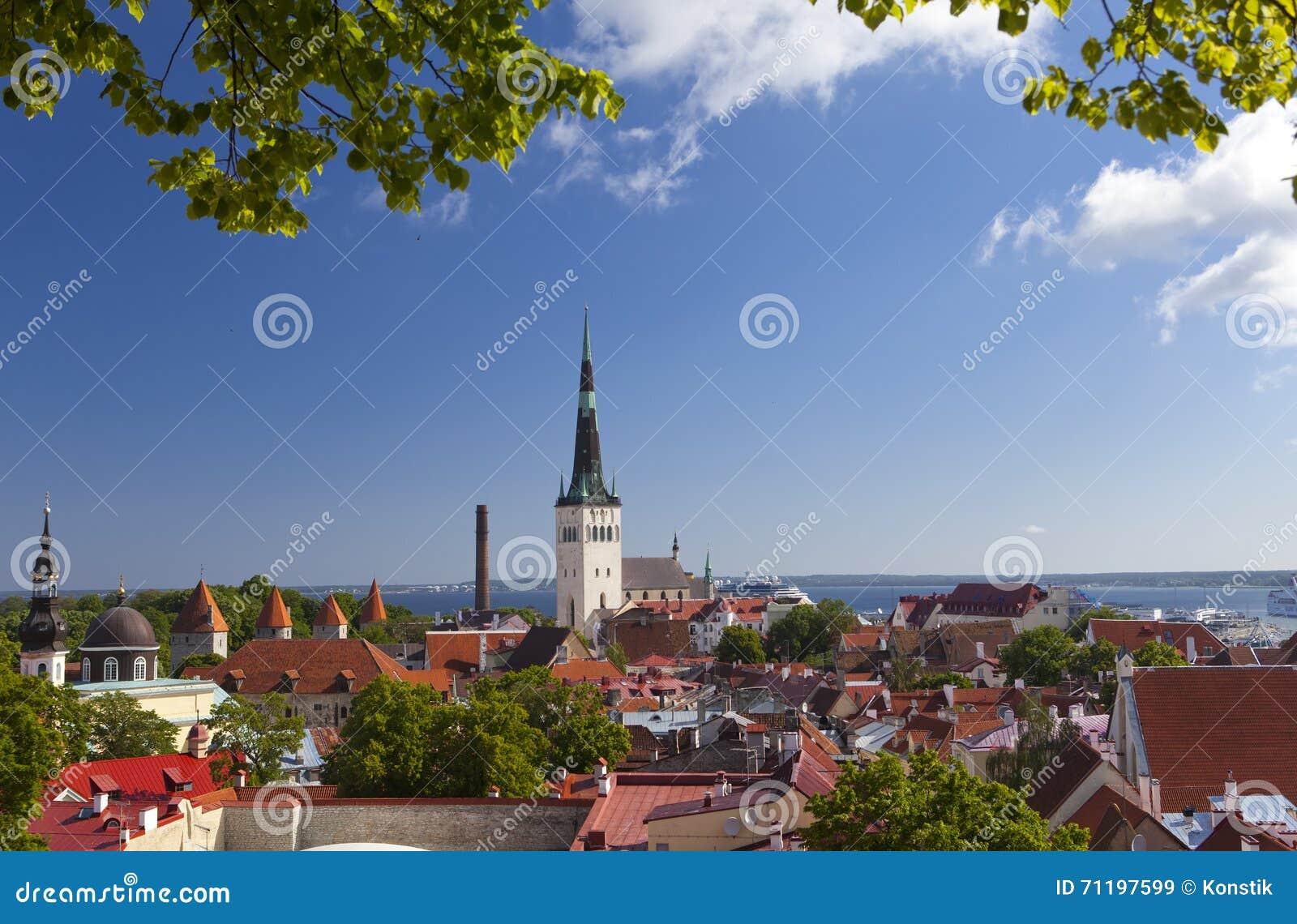 Panorama della città da una piattaforma di osservazione dei tetti della vecchia città tallinn L Estonia