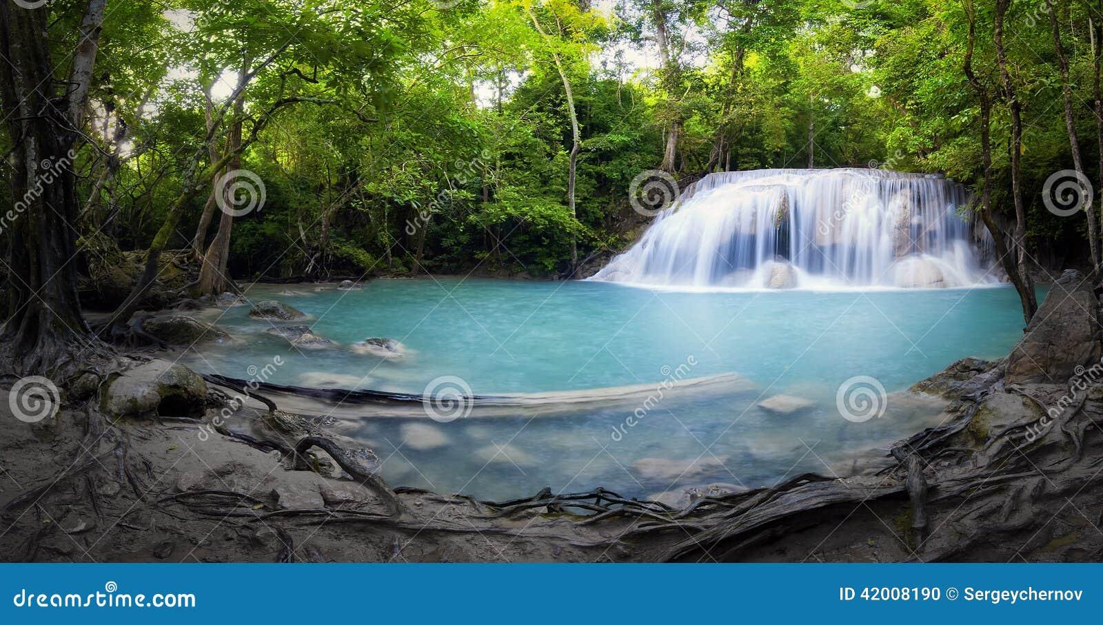 Panorama della foresta tropicale della cascata e di for Piccolo stagno