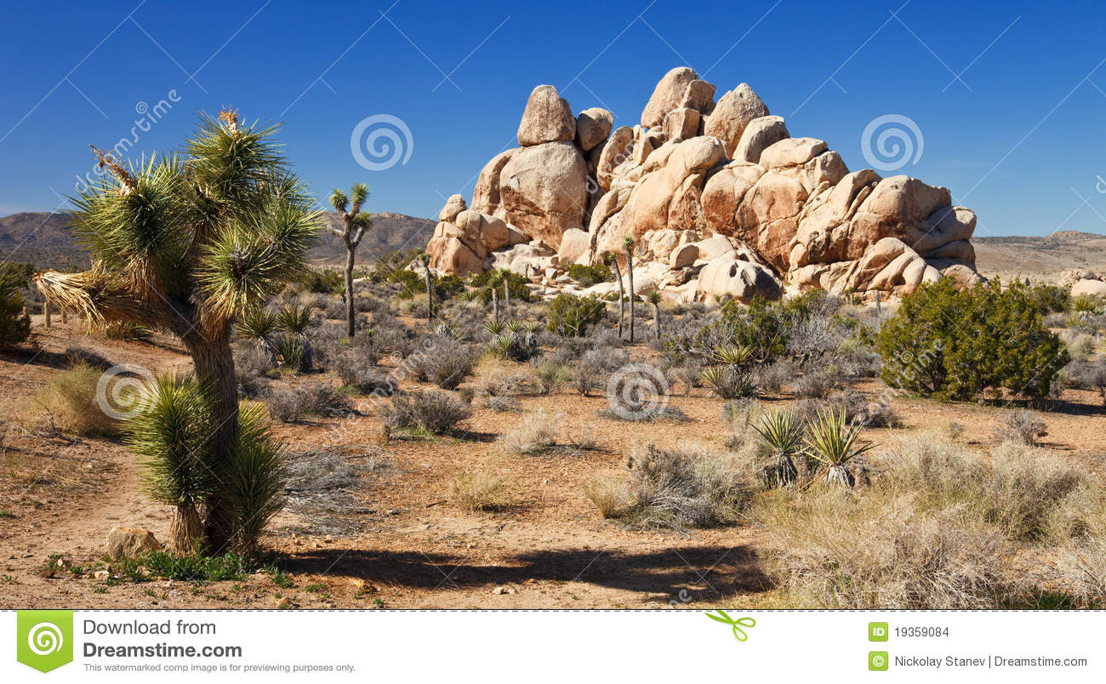 Panorama do deserto de Mojave