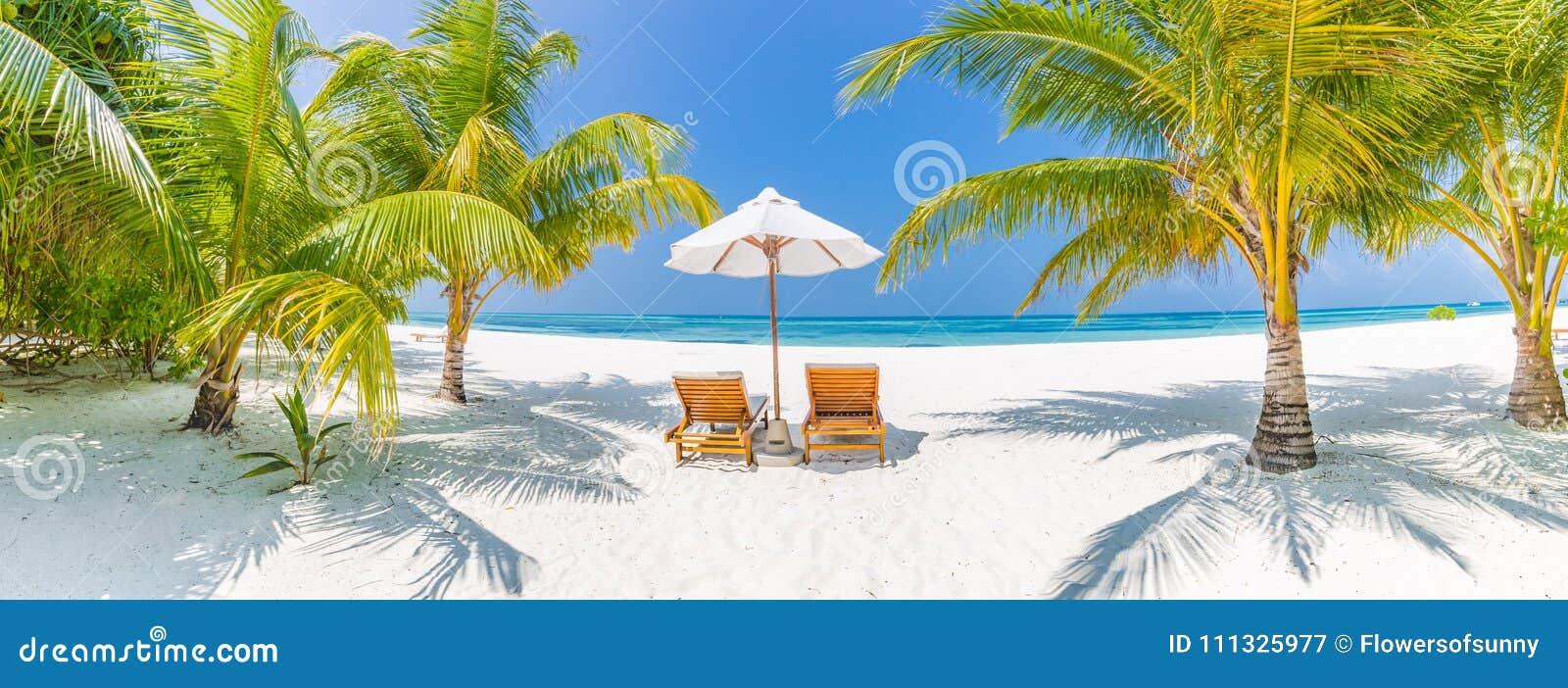 Panorama do fundo do destino do curso do verão Cena tropical da praia