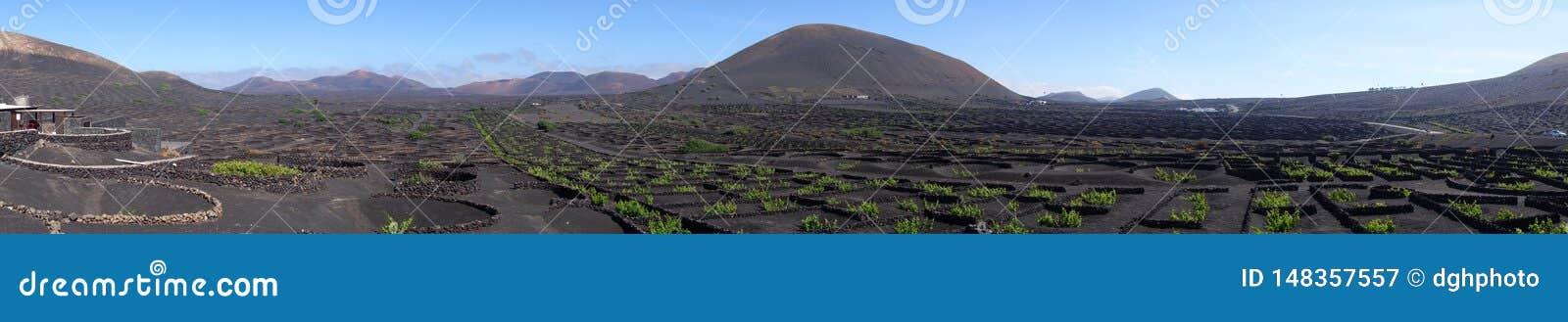 Panorama dorośnięcie w losie angeles Geria na wyspie Lanzarote, wyspy kanaryjskie
