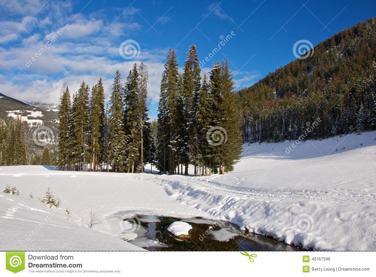 Panorama Golf Course In Winter Stock Photo - Image of ...