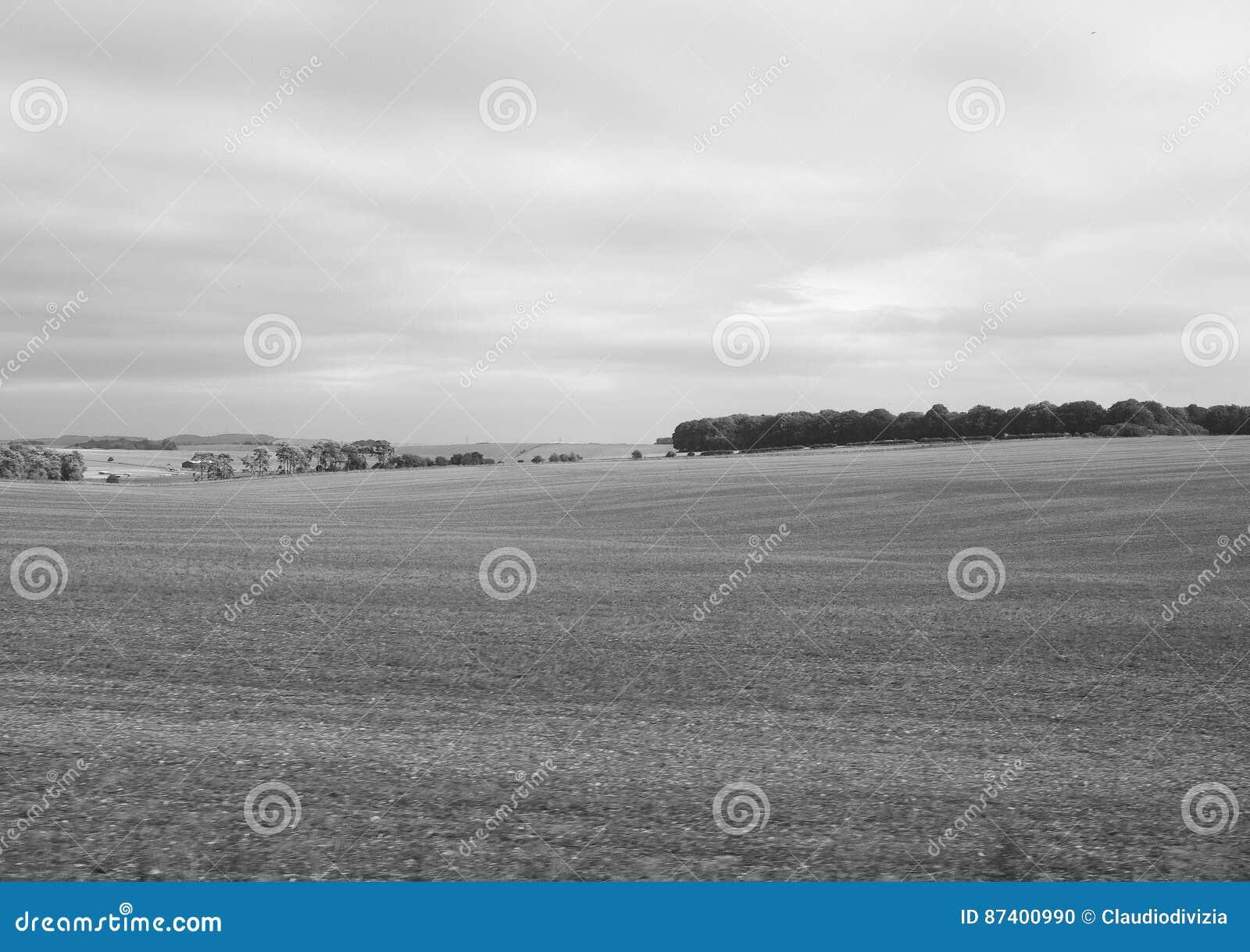 Panorama inglés del país en Salisbury en blanco y negro