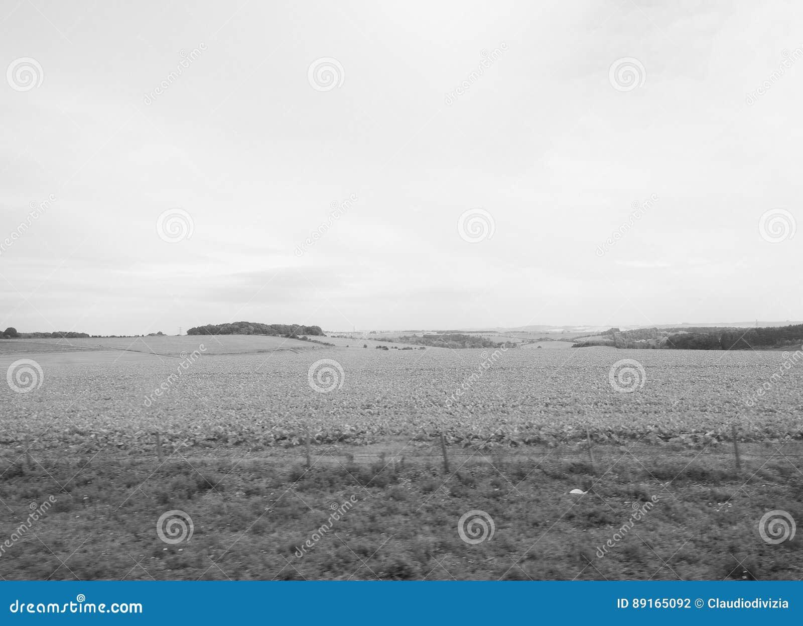 Panorama inglês do país em Salisbúria em preto e branco