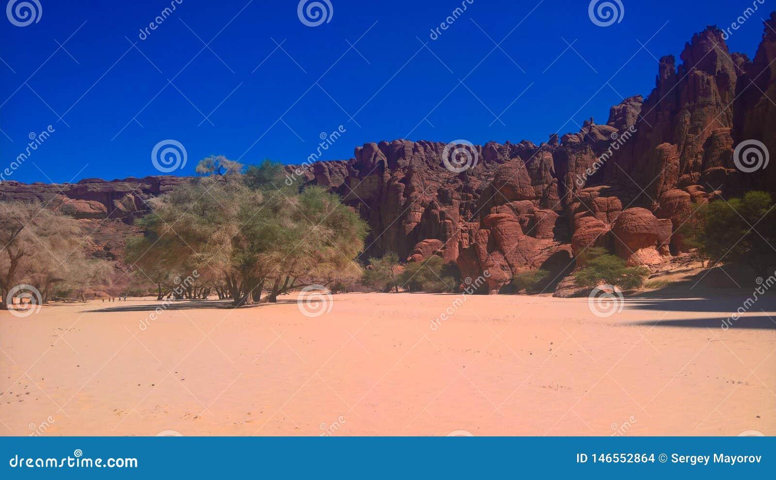 Panorama innerhalb der Schlucht alias Guelta d ?Archei in Ost-Ennedi, Tschad